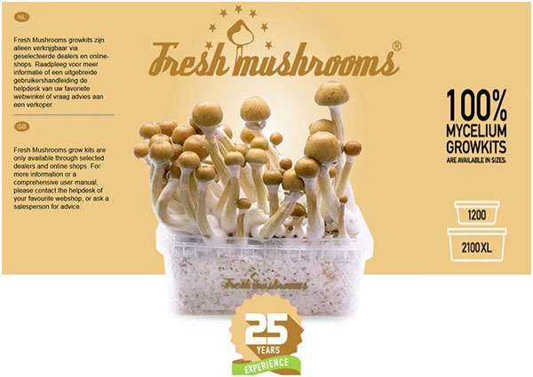 about buy magic mushrooms grow kits freshmushrooms